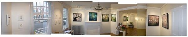 panorama of davis orton gallery by Mary Kocol