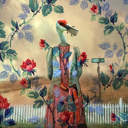 Savvy Crane by Patricia Barry Levy