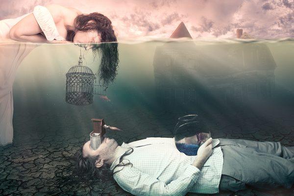 Complicity by Teresa Meier