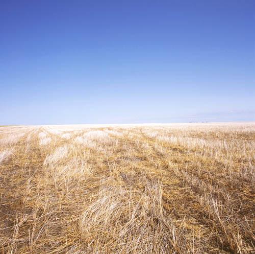 Scenic South Dakota from Dakota Survey by Karen Halverson