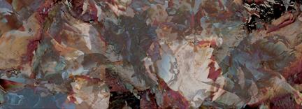 laura radwell, photograph - Birch 4
