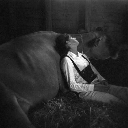 Cow Girl by Meg Birnbaum