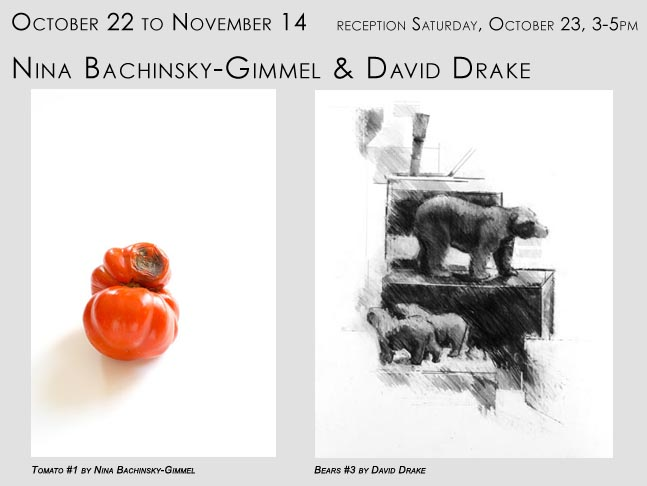 two hudson artists, Nina Bachinsky-Gimmel and David Drake at Davis Orton Gallery Hudson, NY