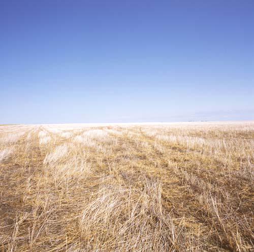 Scenic South Dakota by Karen Halverson