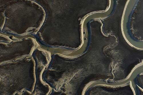 Tidal Figure by Peter Stern