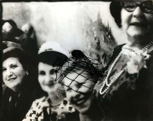 Lady With Veil by Carla Shapiro