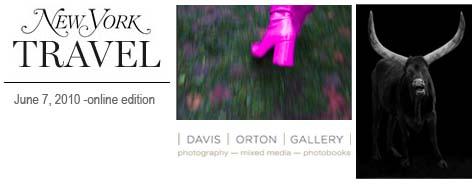 new york magazine online features hudson ny, davis orton gallery, lisa kessler and elliot ross