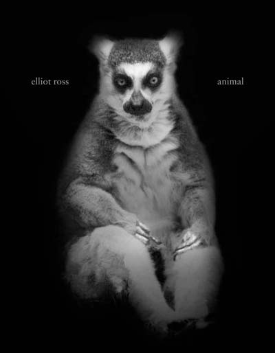 Animal, a new book of photographs by Elliot Ross, copyright 2010