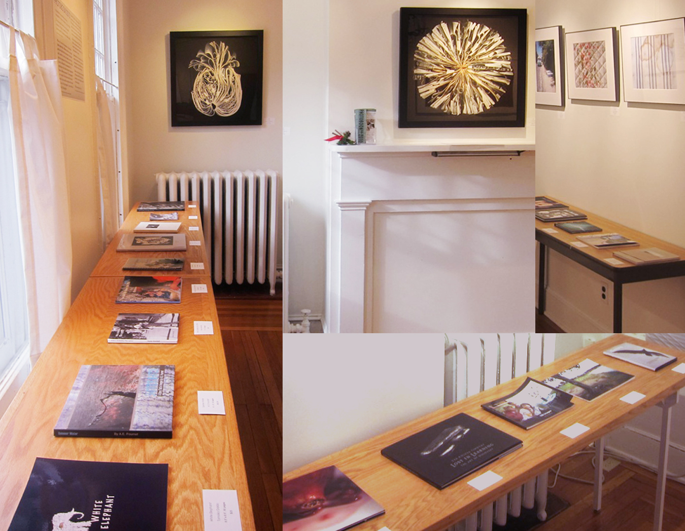 Davis Orton Gallery Photobook!! 2011 Exhibit Collage