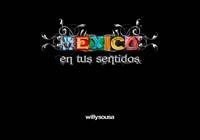 Mexico en tus sentidos by Willy Sousa