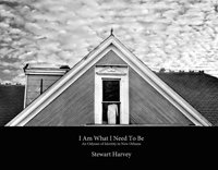 stewart harvey, i am what i need to be - an odyssey of identity in new orleans