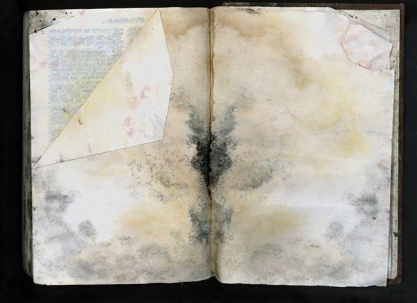 Suggestive Bible by Terri Garland