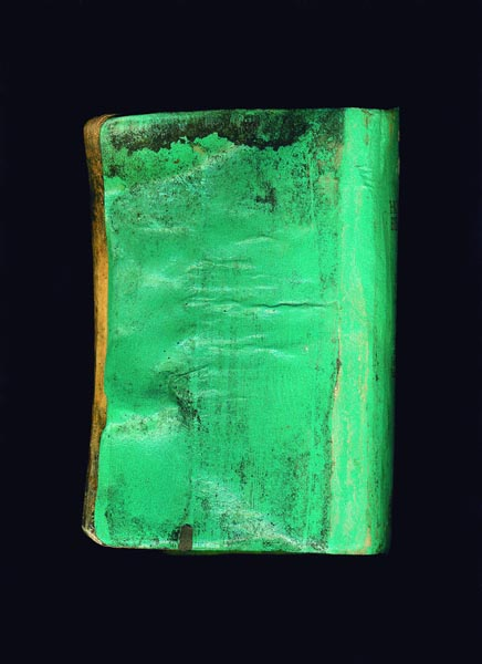 Turquoise Bible by Terry Garland