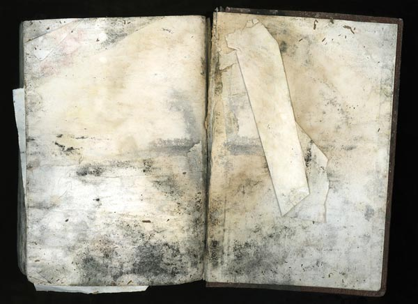 Dog Bible by Terri Garland