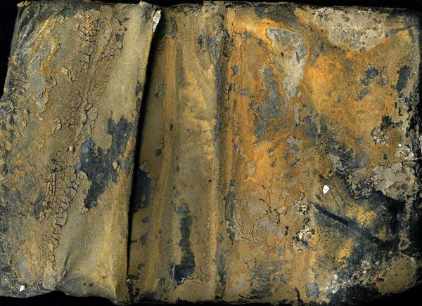 Rusty Bible by Terri Garland