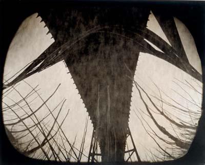Walter Crump-dead twigs and bridge