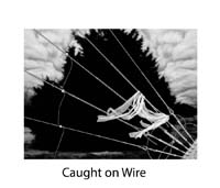 Don Russell, Caught on Wire