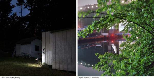 Night Photographs by Kay Kenny - l - and Miska Draskoczy -r