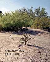 Karen Bucher - Shadow Run