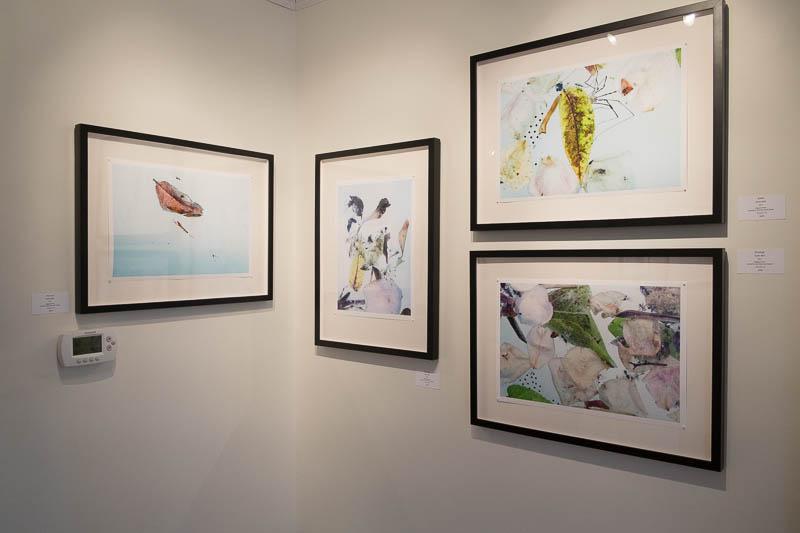 Gallery Shots: Bell, Matthews, Wilkerson,O'Shea 1