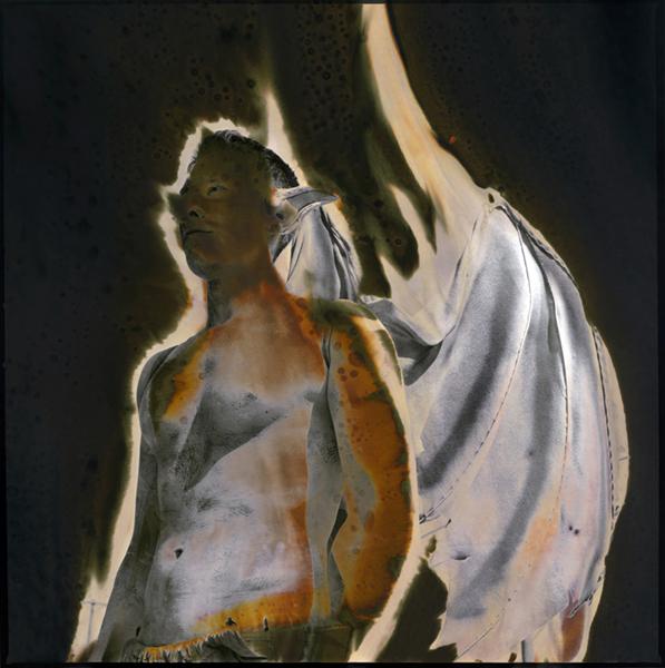 Gargoyle by Jan Cook