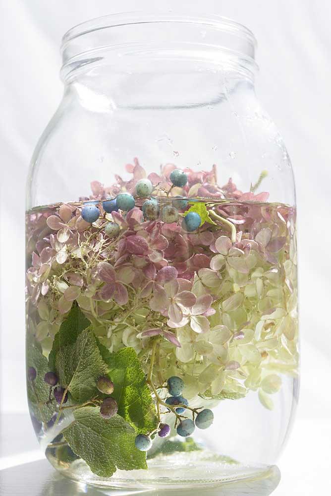 """Porcelainberry +Hydrangea by Emily Hamilton Laux, Pigment Print, 17""""x22"""", ed 1/10, $350"""