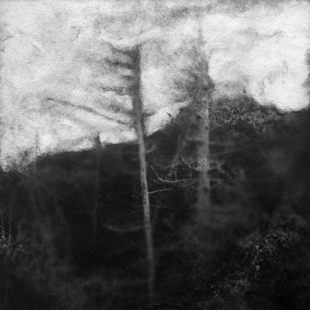 "A Dark Dreamless Sleep, by Carla Shapiro, Sanded Platinum/Palladium Print, unique, approx 8""x8"", Framed - $800"
