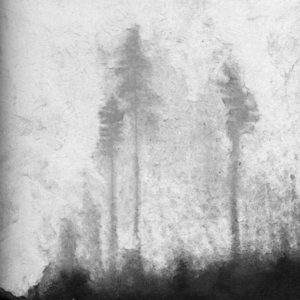 """A Deafening Silence, by Carla Shapiro, Sanded Platinum/Palladium Print, unique, approx 8""""x8"""", Framed - $800"""