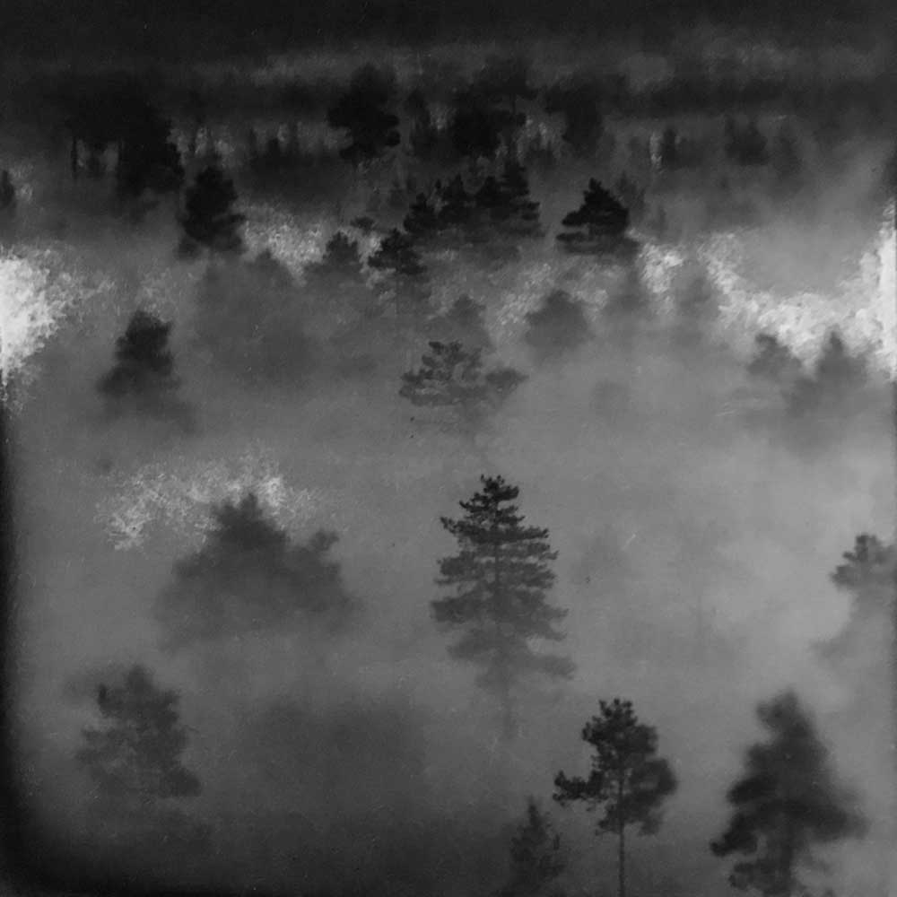"""There Was Just Enough Light, by Carla Shapiro, Sanded Platinum/Palladium Print, unique, approx 8""""x8"""", Framed - $800"""
