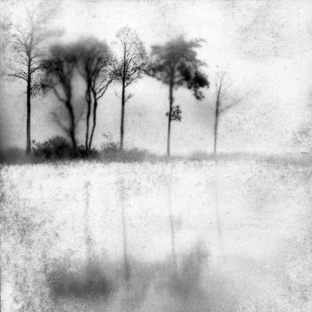 "Lull Us Like a Dream, by Carla Shapiro, Sanded Platinum/Palladium Print, unique, approx 8""x8"", Framed - $800"
