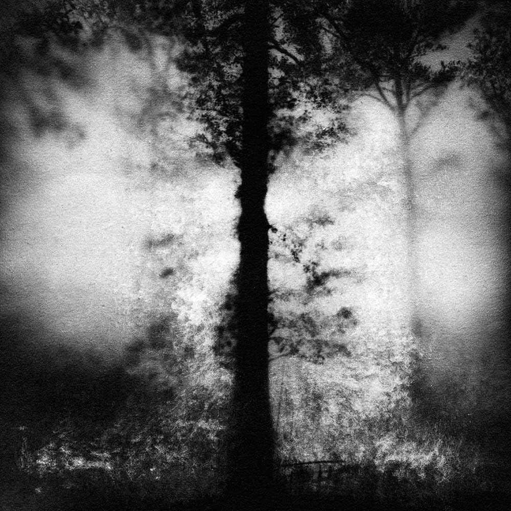 """The Blush Shadows of Early Morning, by Carla Shapiro, Sanded Platinum/Palladium Print, unique, approx 8""""x8"""", Framed - $800"""