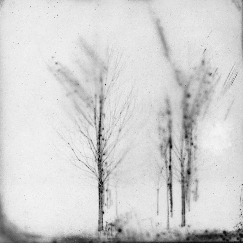 "Nothing is Truly Nothing, by Carla Shapiro, Sanded Platinum/Palladium Print, unique, approx 8""x8"", Framed - $800"