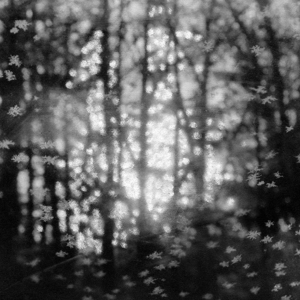 """The Cold Air Smelled of Sweetness, by Carla Shapiro, Sanded Platinum/Palladium Print, unique, approx 8""""x8"""", Framed - $800"""