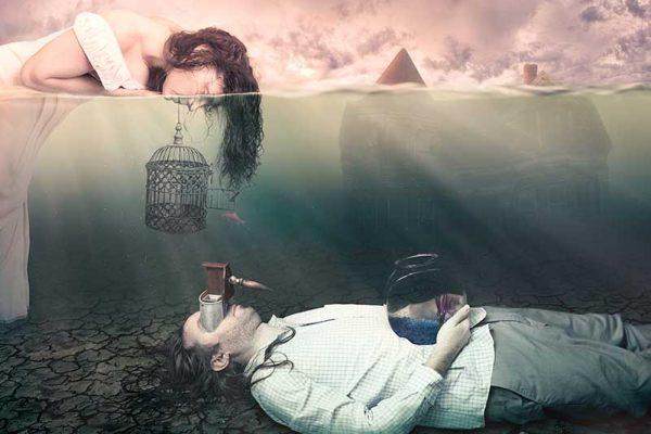 Complicity by Teresa Meier.