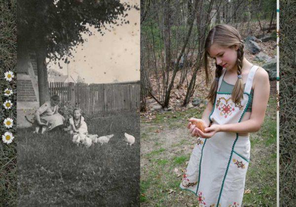 Huchner (Chickens) by Astrid Reischwitz