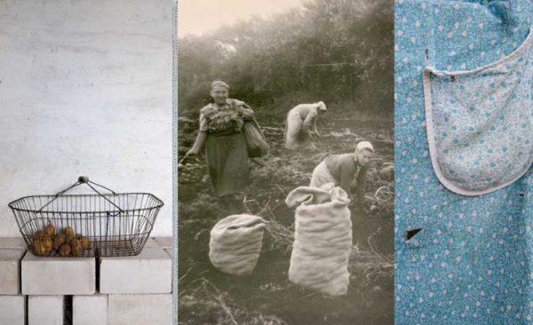 Kartoffelroden (Harvesting Potatoes) by Astrid Reischwitz