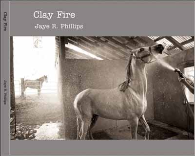 Clay Fire by Jaye Phillips