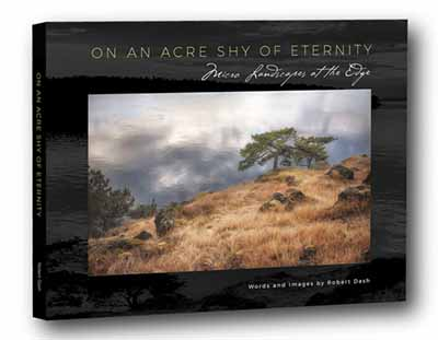 An Acre Shy of Eternity by Robert Dash