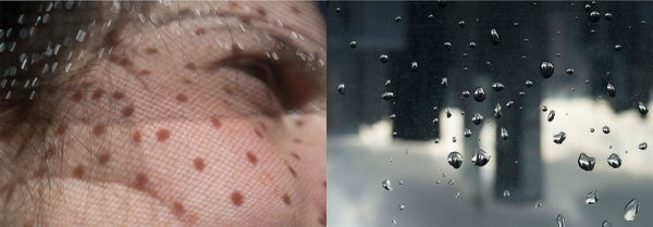 Sun Drops - Rain Drops by Michal Greenboim