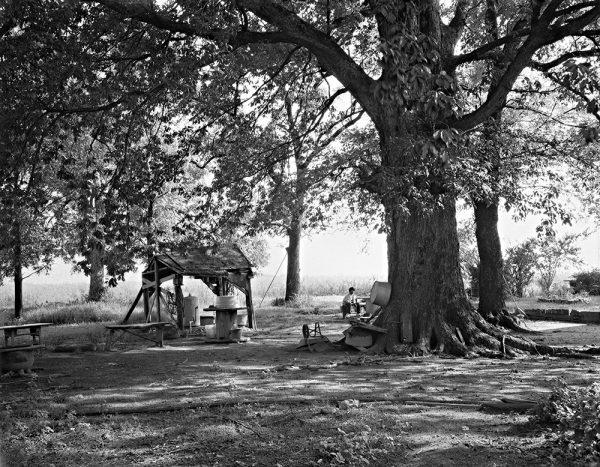 Inez Faust's Yard, Oglethorpe County, Georgia, 1991 by Vaughn Sills