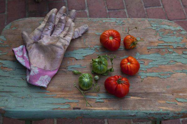 Pink Gloves by Laurie Blakeslee
