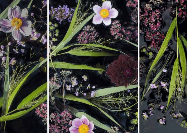 Water Tapestry Triptych Late Summer by Lisa Redburn