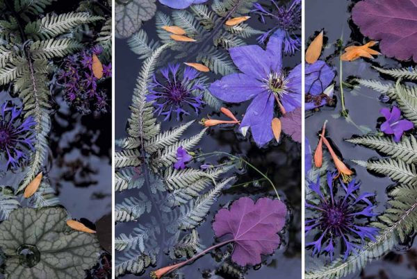 Water Tapestry Triptych Early Summer by Lisa Redburn