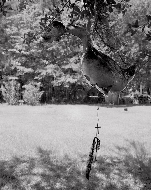 Herbert Murray's Yard , John's Island, South Carolina, 2002 by Vaughn Sills