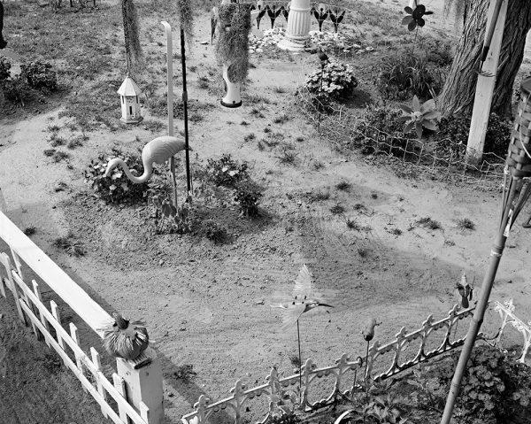 Alexander Bell's Garden, Greenville, North Carolina, 2005 by Vaughn Sills