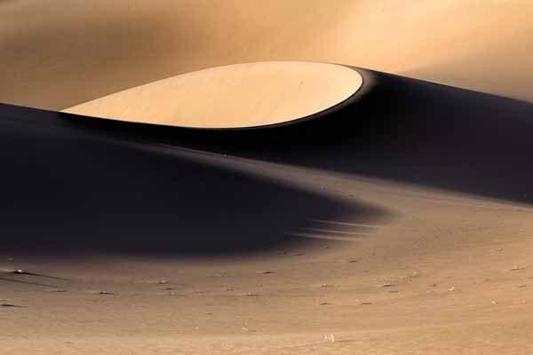 Terra Incognita XVIII by William Nourse