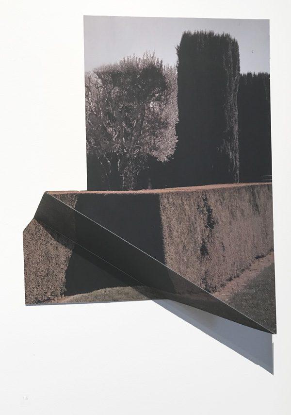 """Fioli, by Margaret Saliske, 2016 13""""W X 3""""D X 14""""H inkjet, aluminum, $2200"""