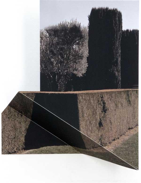 """""""Fioli,"""" 2016, 14""""h x 13""""w, 3""""d, inkjet, aluminum by Margaret Saliske"""