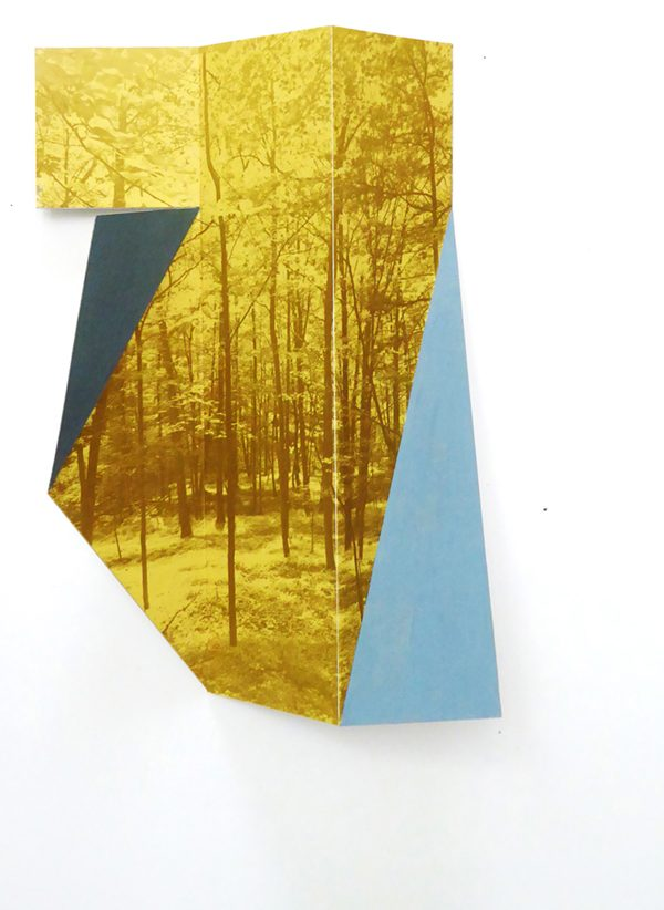 Yellow and Blue by Margaret Saliske, inkjet and aluminum