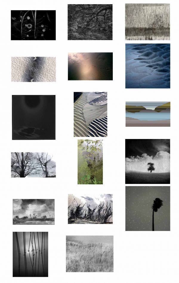 LandEscape Curated by Carla Shapiro and Ruth Wetzel, 17 artists: photographs and videos